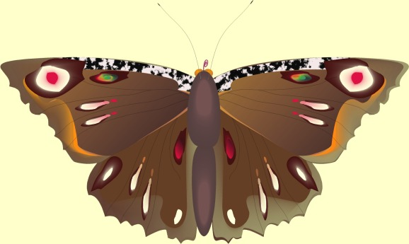 Butterfly Art by David Neal Dubois